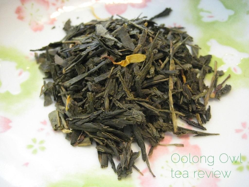Artichoke Green from Adagio Teas - Oolong Owl Tea Review (1)