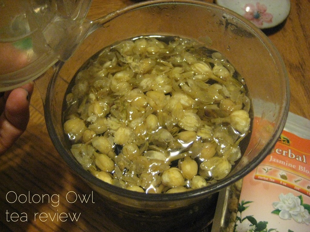 Jasmine Blossom from Natures Tea Leaf - Oolong Owl tea review (6)