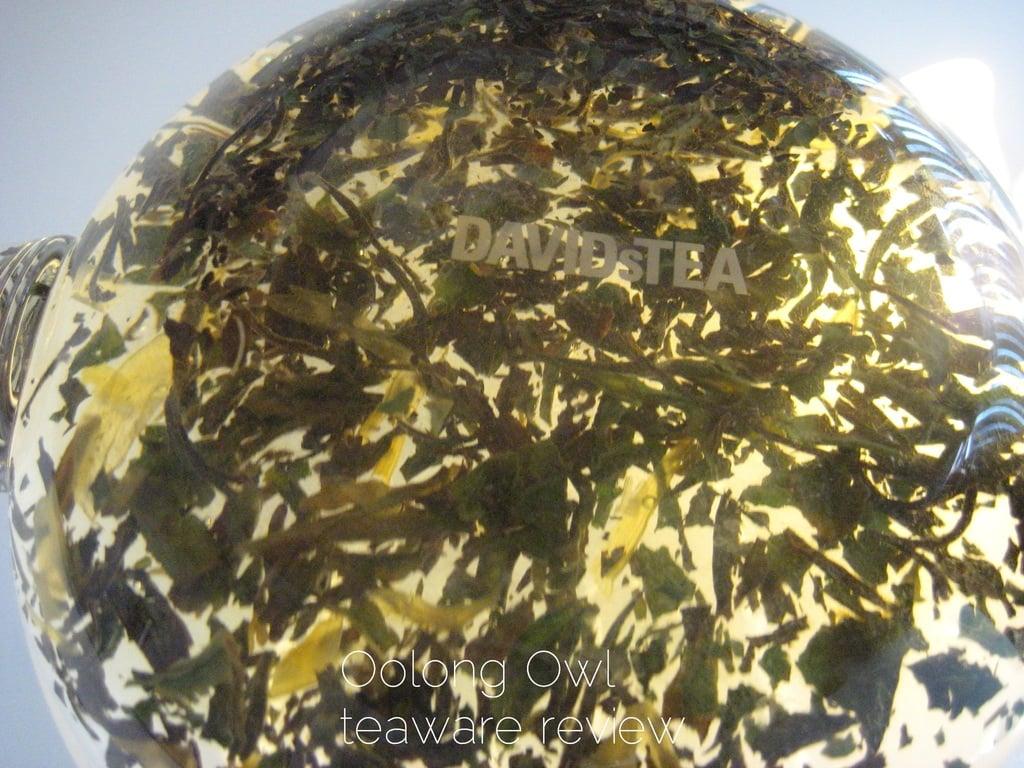 Blooming Glass Tea pot from DavidsTea - Oolong Owl Review (9)