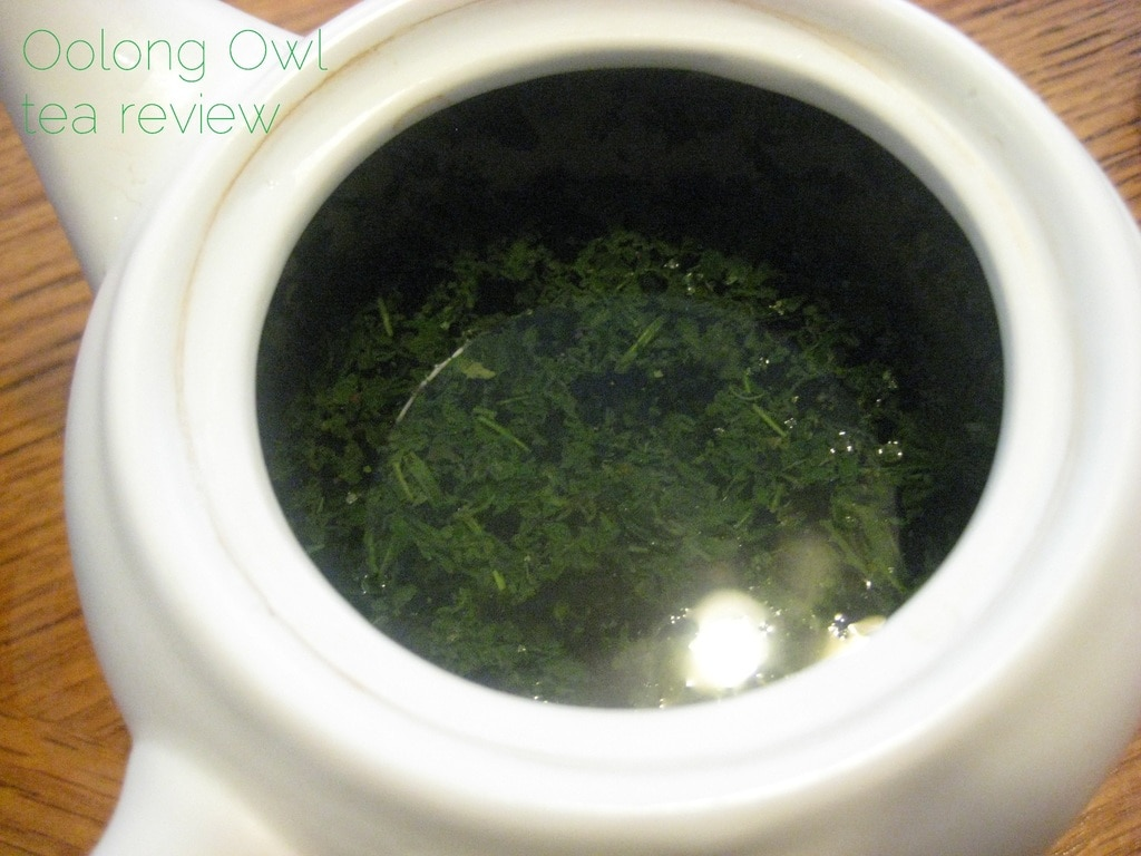 gyokuro kin from Dens Tea - Oolong Owl Tea Review (5)