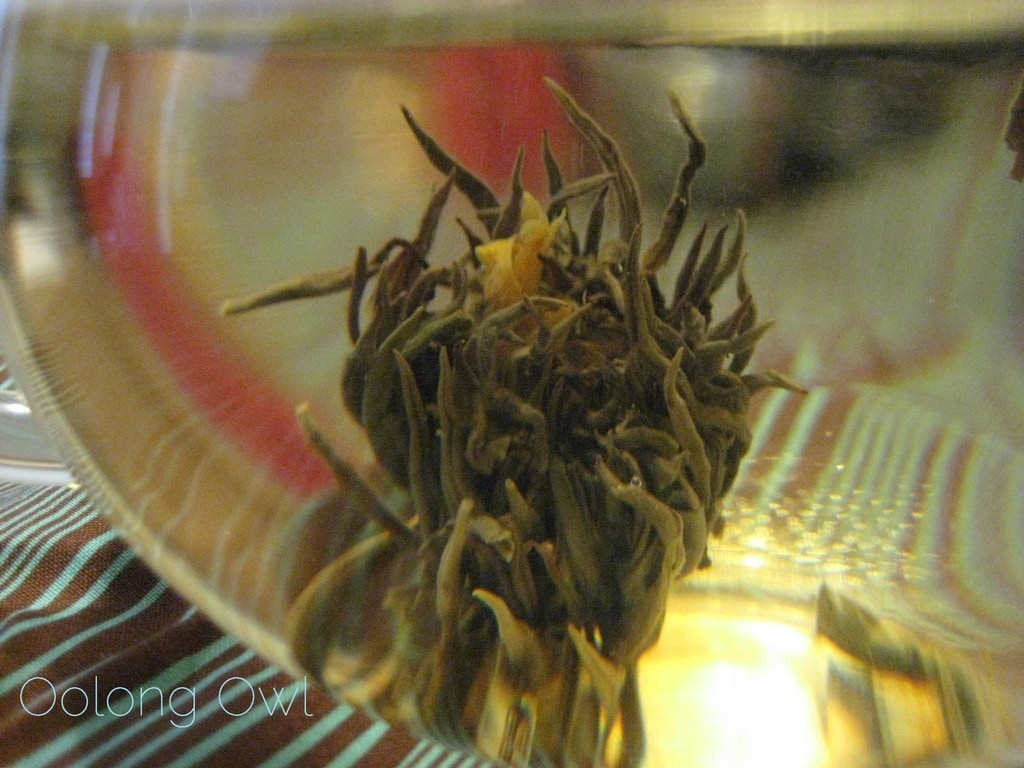 Oolong Owls first blooming tea (11)