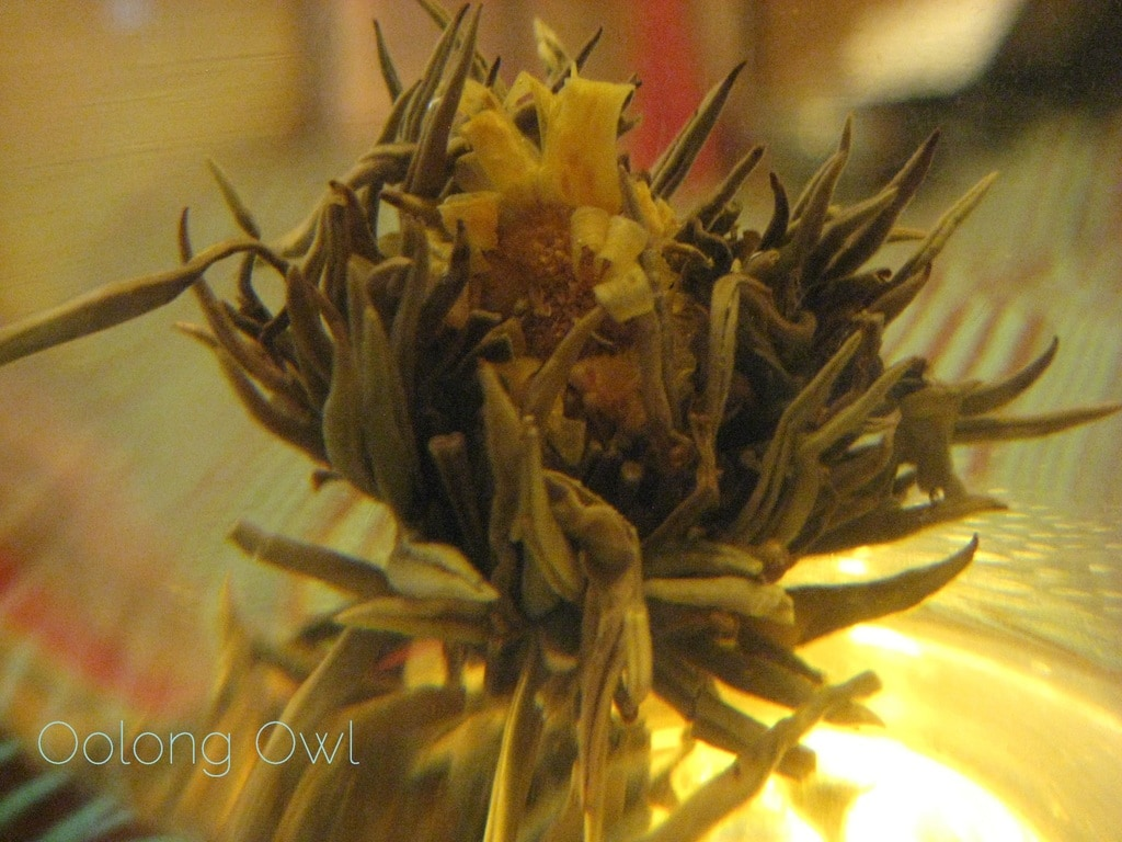 Oolong Owls first blooming tea (14)