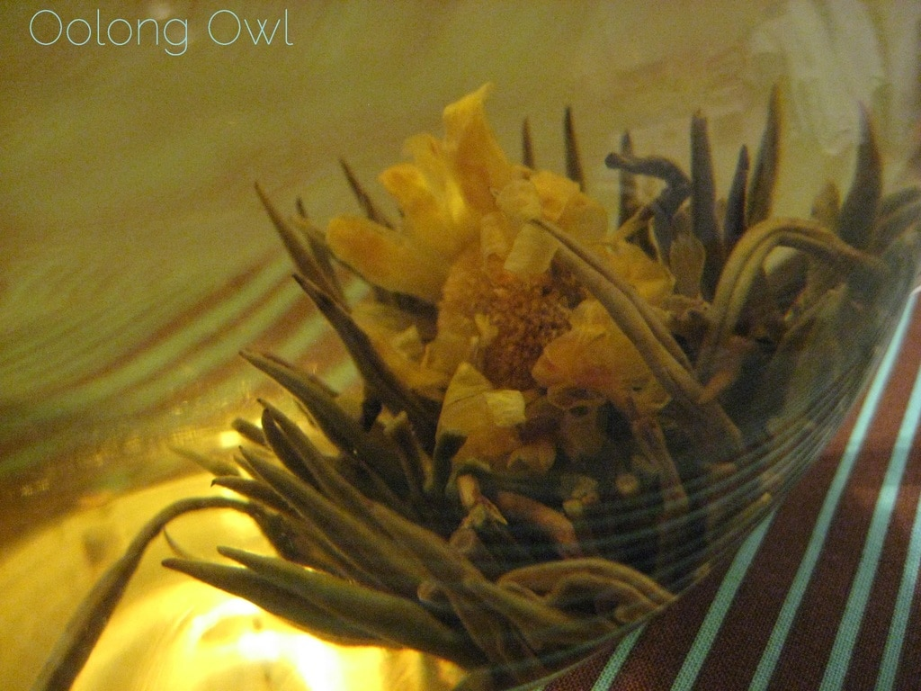 Oolong Owls first blooming tea (17)