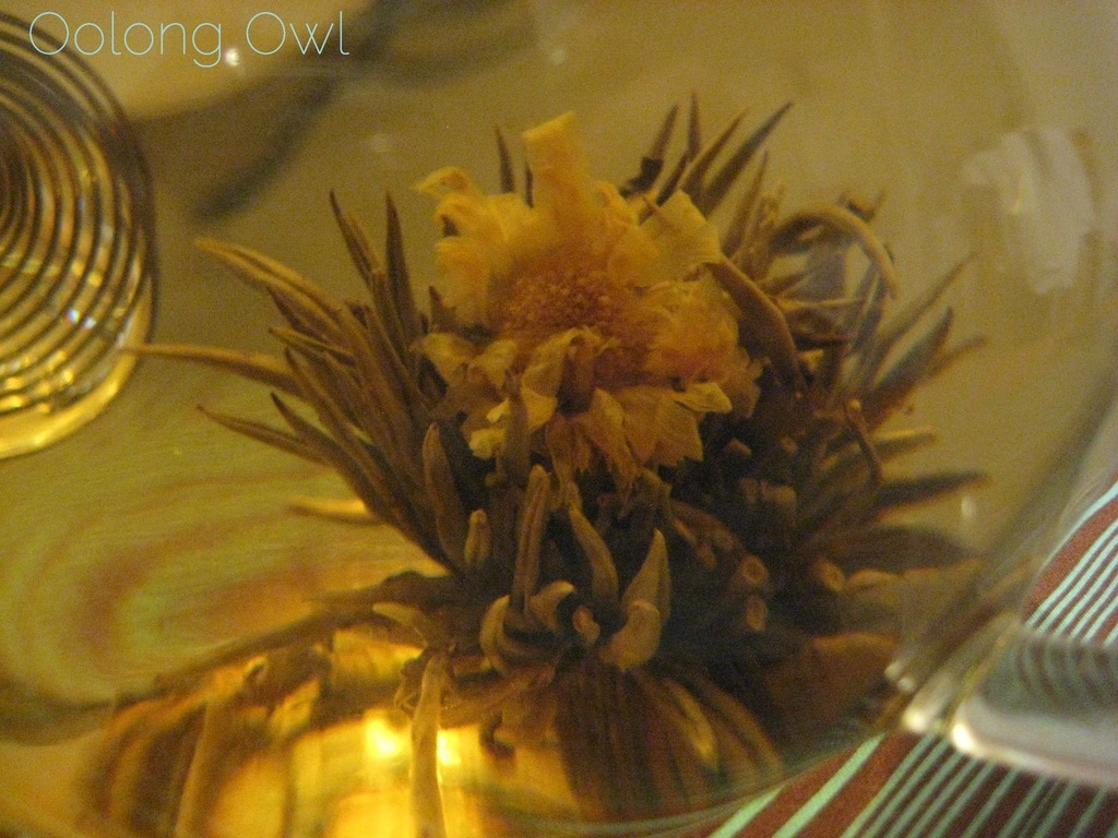 Oolong Owls first blooming tea (19)