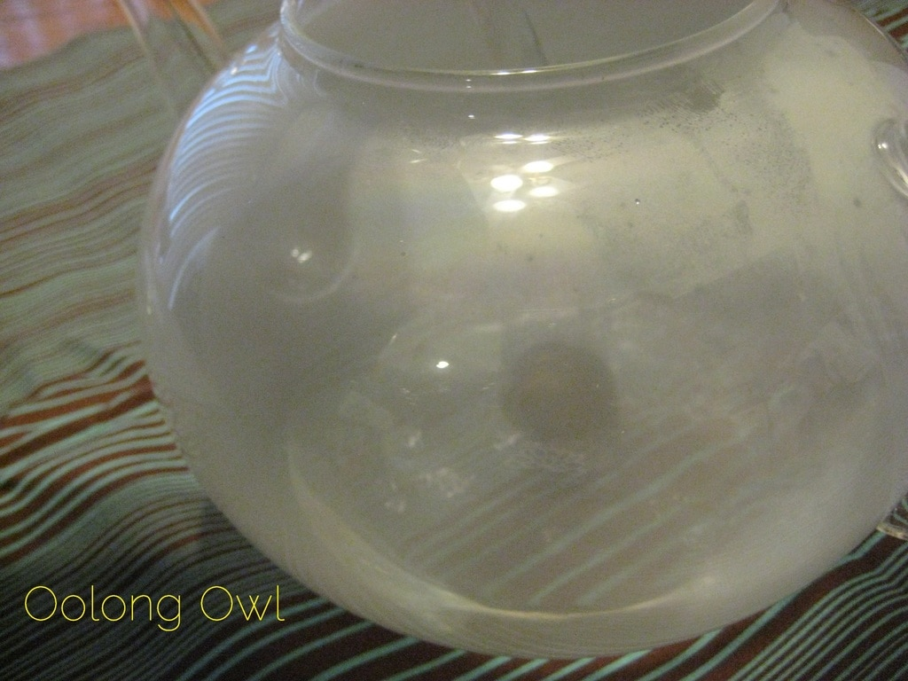Oolong Owls first blooming tea in teapot steam