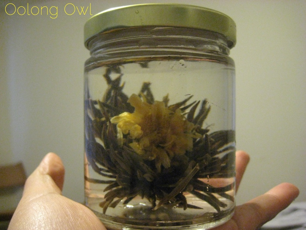 Oolong Owls first blooming tea yellow (4)