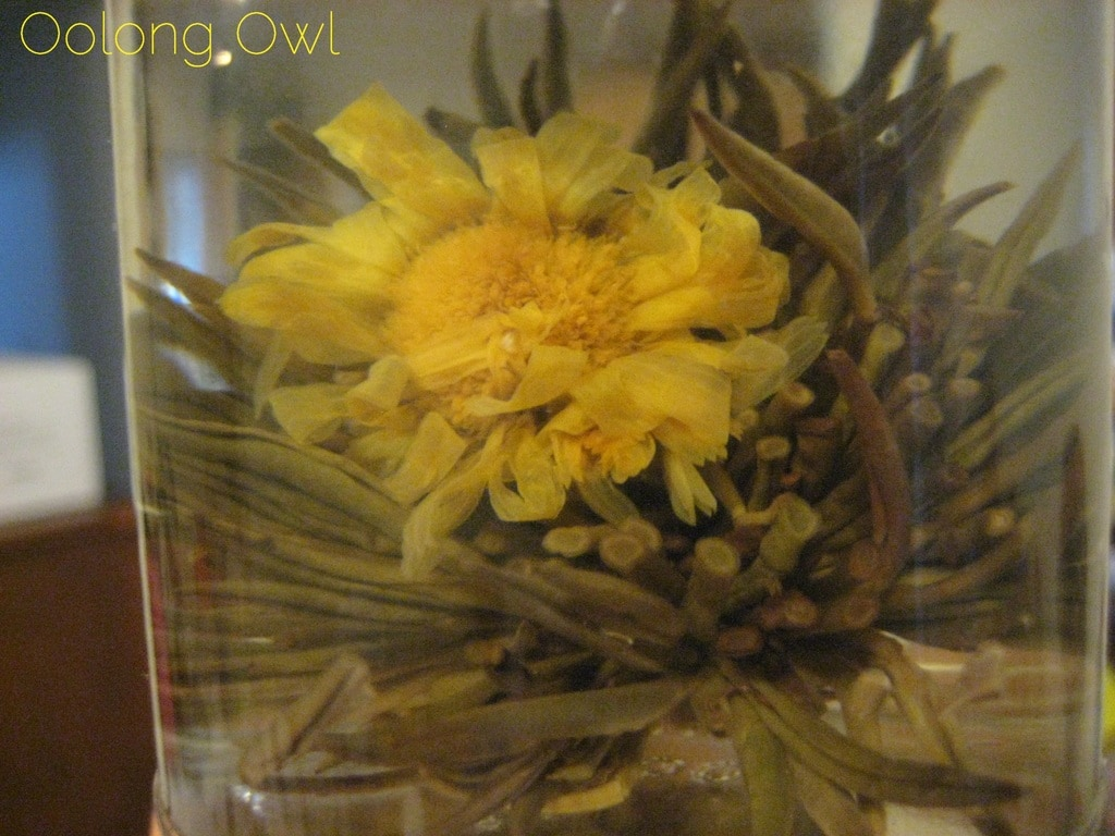 Oolong Owls first blooming tea yellow (5)