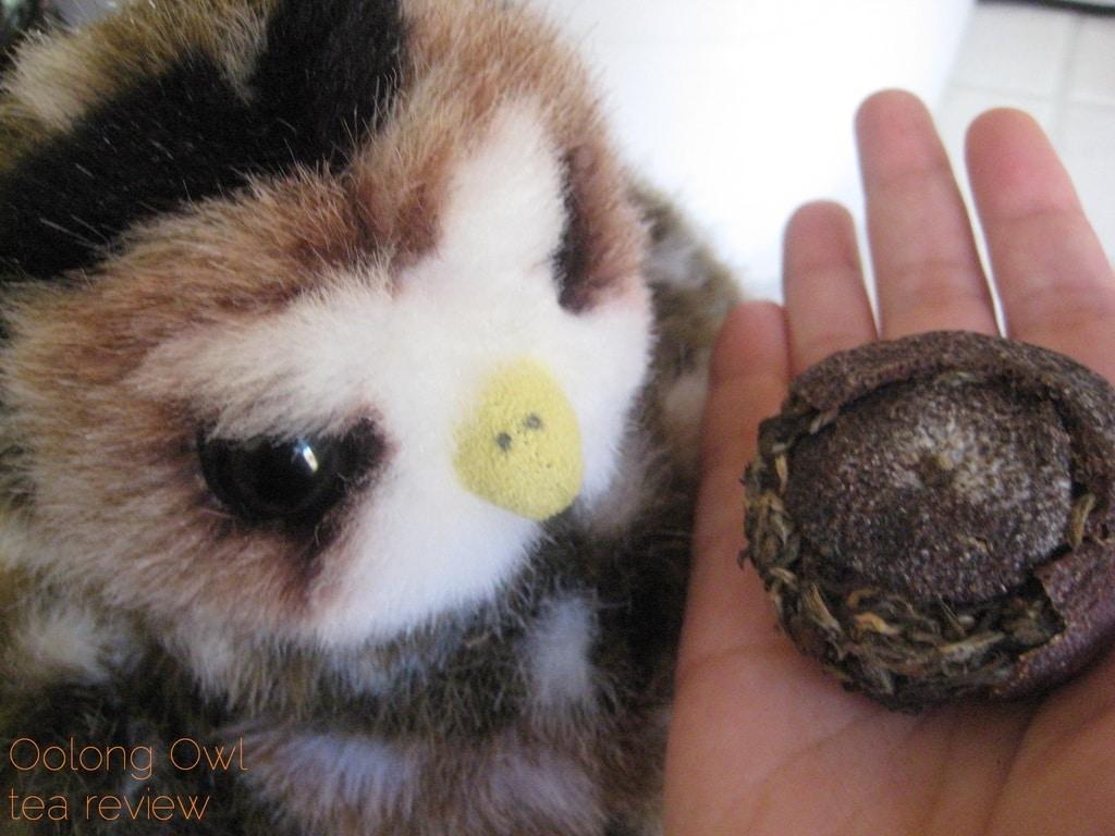Mandarin Pu-er white tea from New Mexico Tea Co - Oolong Owl Tea Review (5)