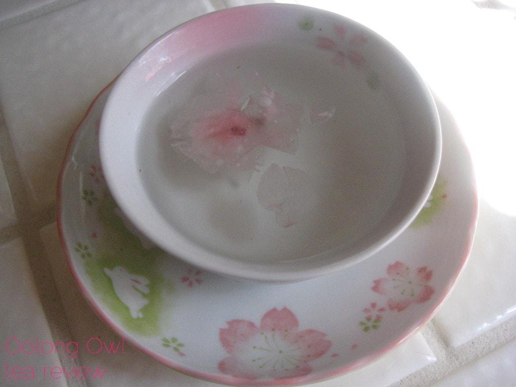 Sakura Tea from Yunomi us - Oolong Owl Tea Review (13)