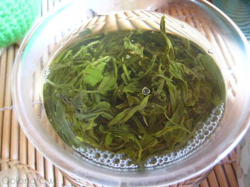 Autumn Harvest Laoshan Green from Verdant Tea - Oolong Owl tea review (7)