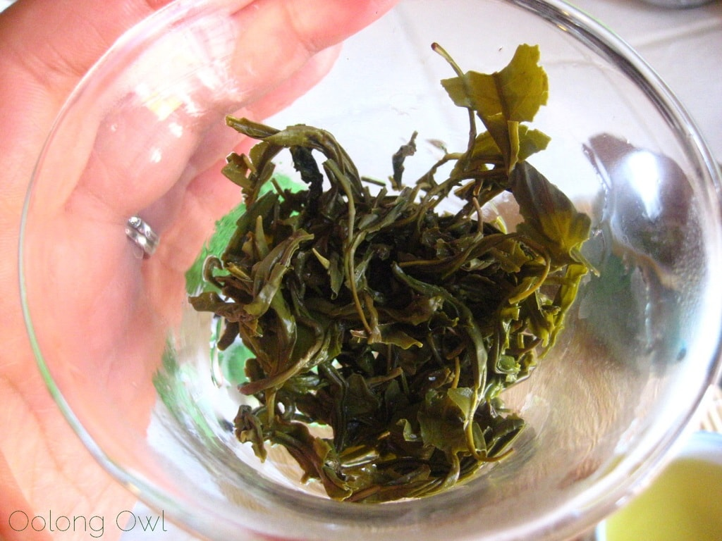Autumn Harvest Laoshan Green from Verdant Tea - Oolong Owl tea review (8)