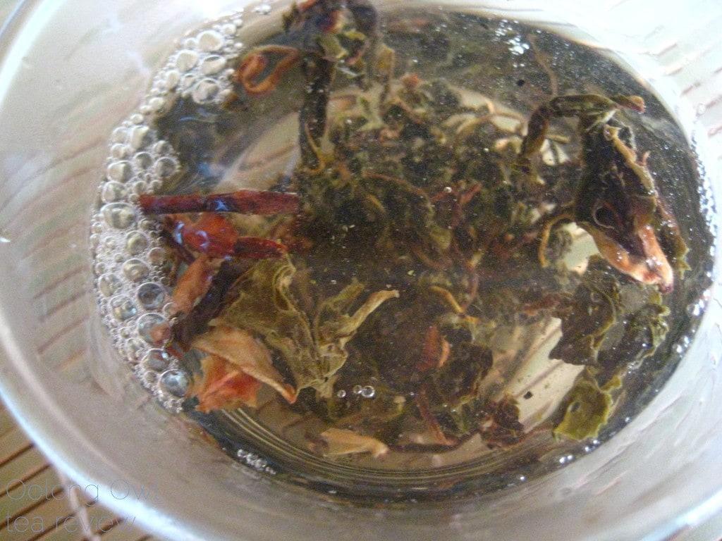 Mandala Tea Wild Monk Sheng 2012 - Oolong Owl Tea Review (19)