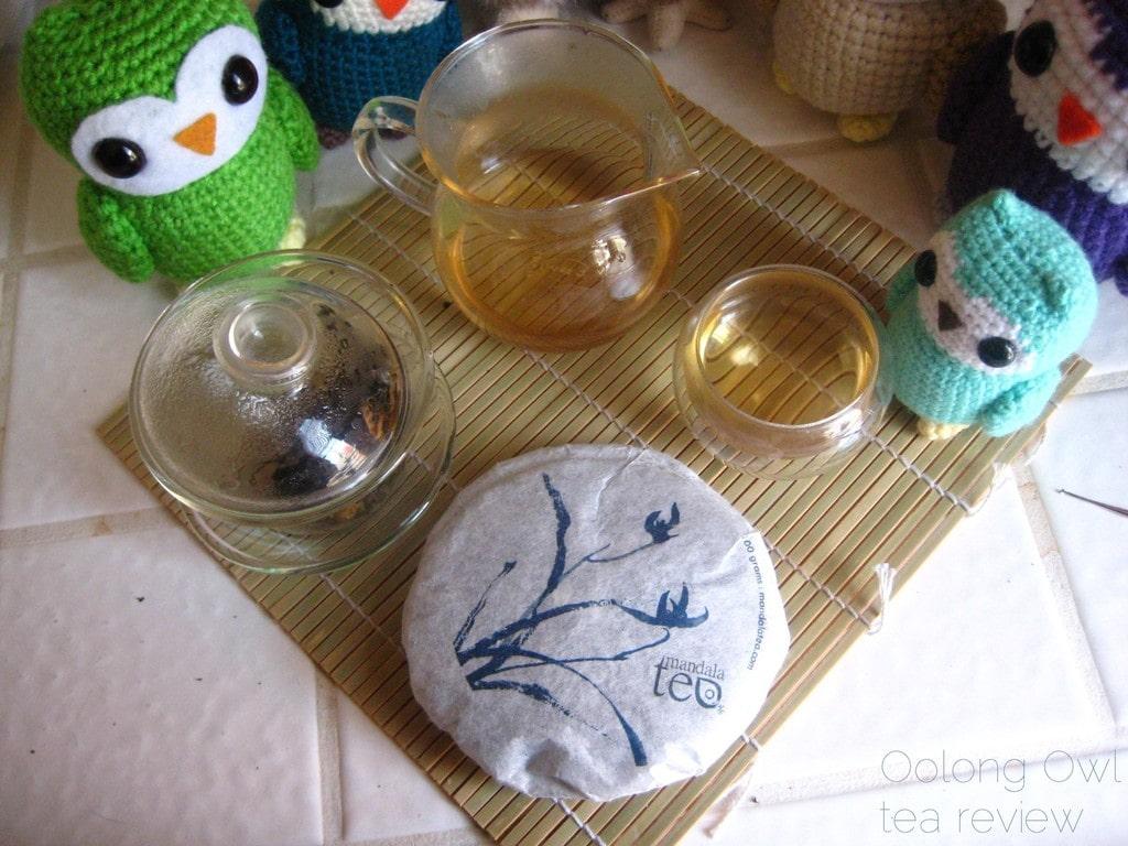 Mandala Tea Wild Monk Sheng 2012 - Oolong Owl Tea Review (21)