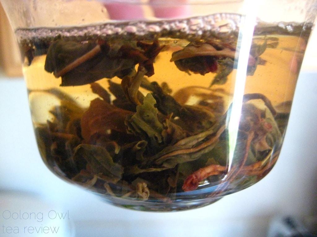 Mandala Tea Wild Monk Sheng 2012 - Oolong Owl Tea Review (22)