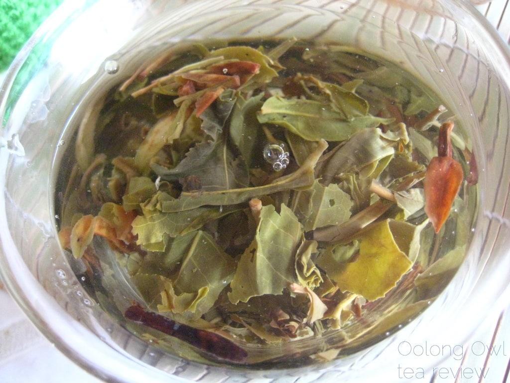 Mandala Tea Wild Monk Sheng 2012 - Oolong Owl Tea Review (25)