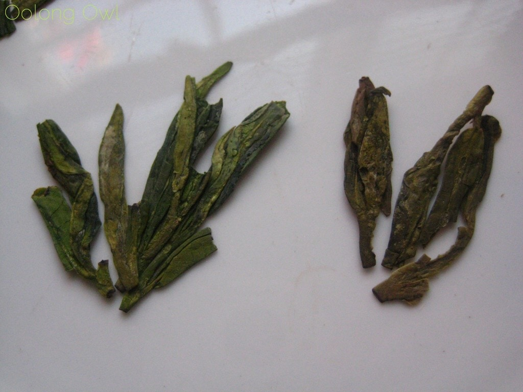 Mrs Li She Feng Dragonwell from Verdant Tea - Oolong Owl tea review (3)
