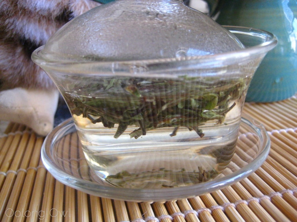 Organic Silver Needle White Tea from Teavivre - Oolong Owl Tea Review (6)