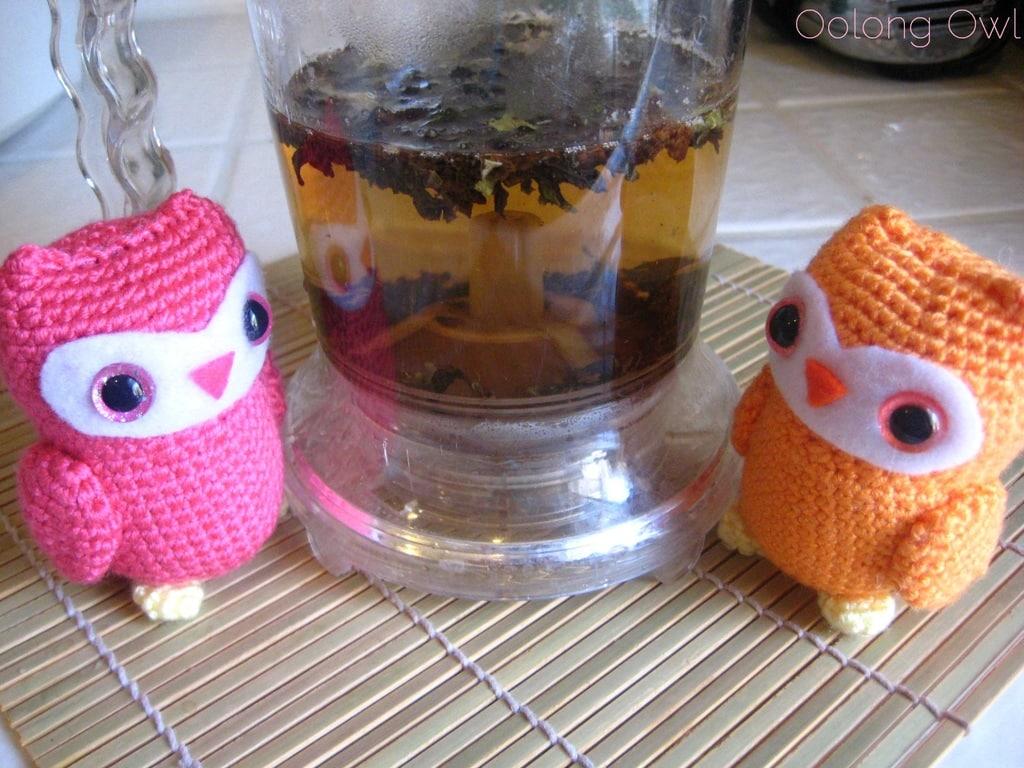 Peach Oolong from Della Terra Teas - Oolong owl tea review (3)