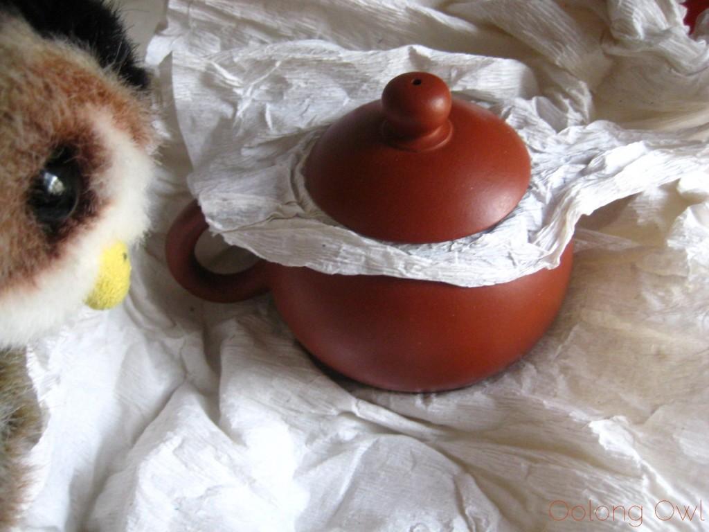 Oolong Owls first yixing tea pot (7)