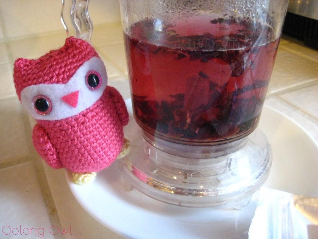 Pondi Cherry from New Mexico Tea Company - Oolong Owl Tea Review (3)