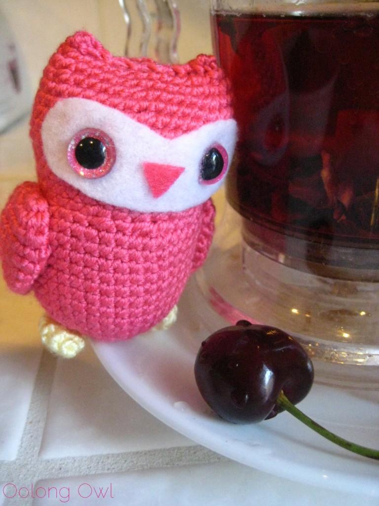 Pondi Cherry from New Mexico Tea Company - Oolong Owl Tea Review (5)