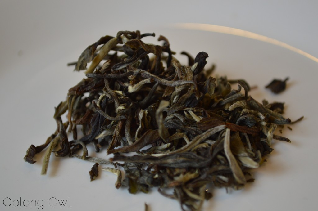 White Monkey Tea from Little Red Cup Tea CO - Oolong Owl Tea Review (1)