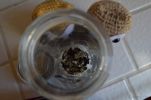 Glass Tea Thermos from Mandala Tea - Oolong Owl tea review (6)
