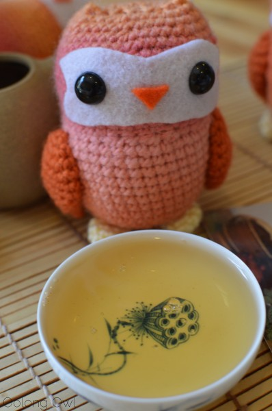 autumn 2014 sheng yiwu mountain puer from Misty peak teas - oolong owl tea review (7)