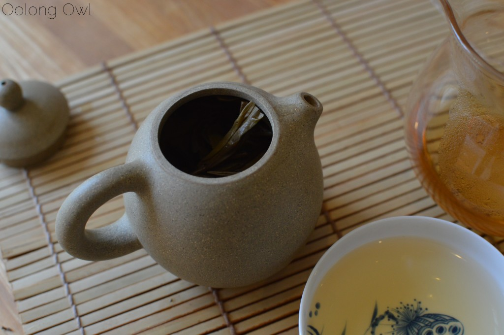 autumn 2014 sheng yiwu mountain puer from Misty peak teas - oolong owl tea review (8)
