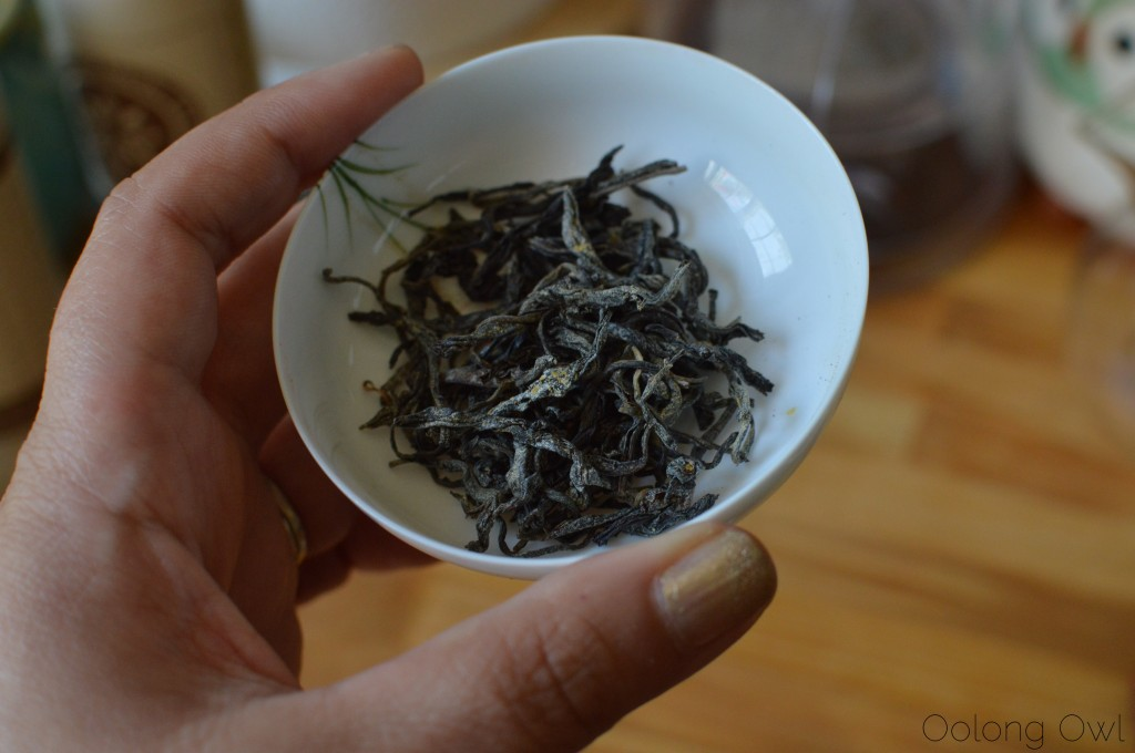 pumpkin milkshake 2 from butiki teas - oolong owl tea review (2)