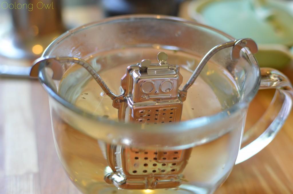 kikkerland robot tea infuser - oolong owl (10)
