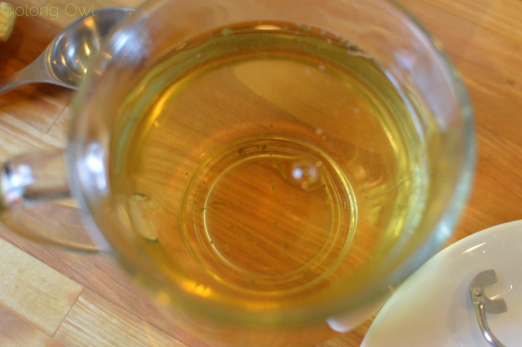 kikkerland robot tea infuser - oolong owl (14)