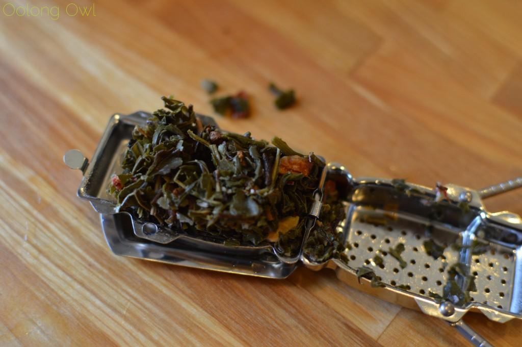 kikkerland robot tea infuser - oolong owl (15)