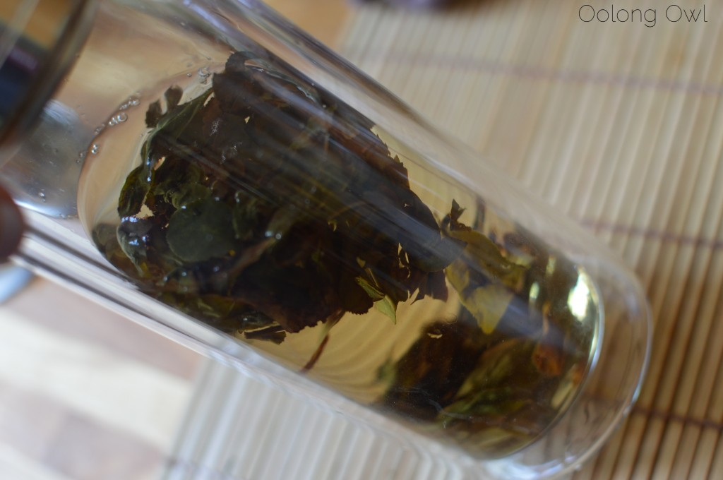 zhushan oolong goetea tealet - oolong owl tea review (5)