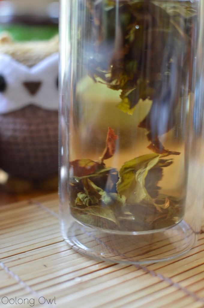 zhushan oolong goetea tealet - oolong owl tea review (6)