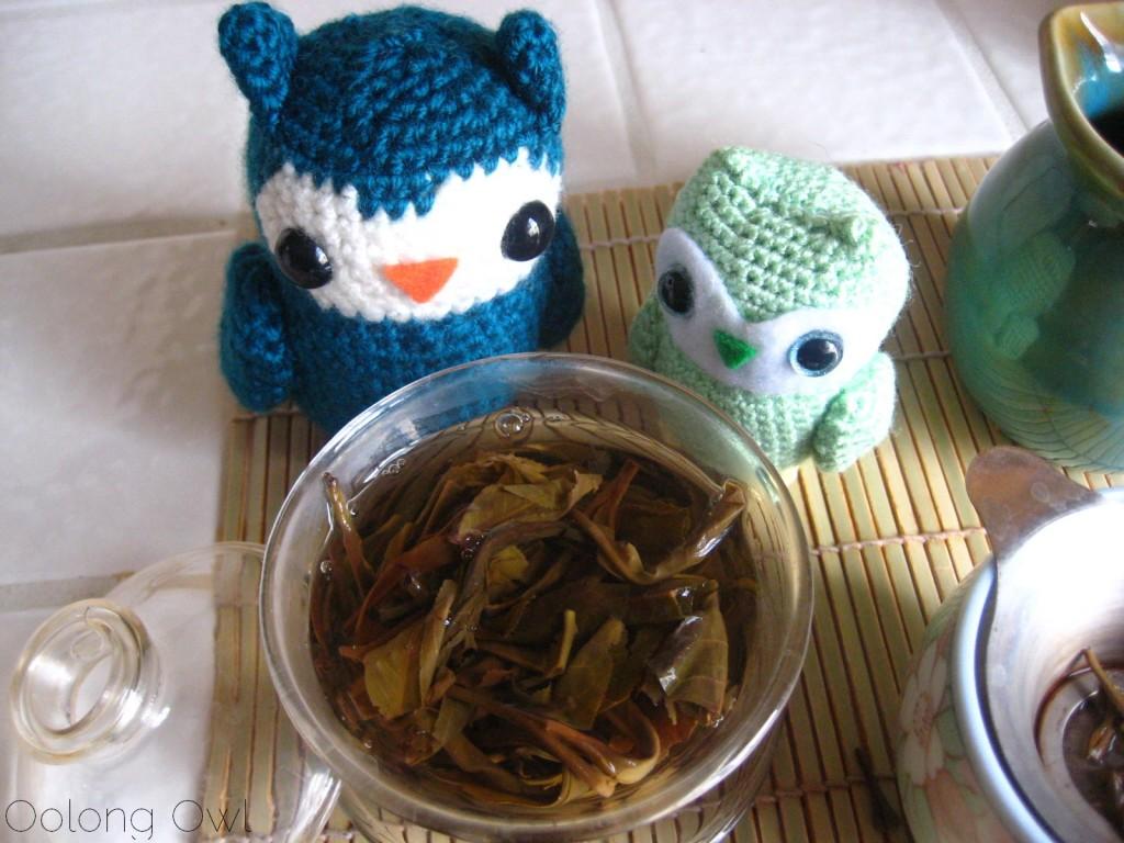 Autumn 2012 Sheng Pu er from Misty Peak Teas - Oolong Owl Tea Review (16)