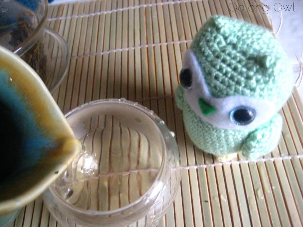 Autumn 2012 Sheng Pu er from Misty Peak Teas - Oolong Owl Tea Review (9)