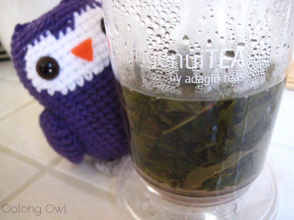 Magnolia Blossom Oolong from Upton Tea Imports - Oolong Owl Tea Review (5)