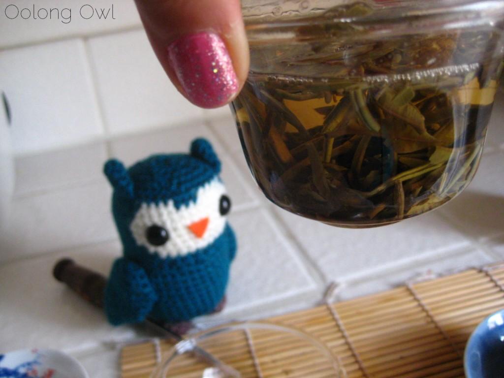 Mandala Tea Silver Buds Raw Puer 2012 - Oolong Owl Tea Review (20)
