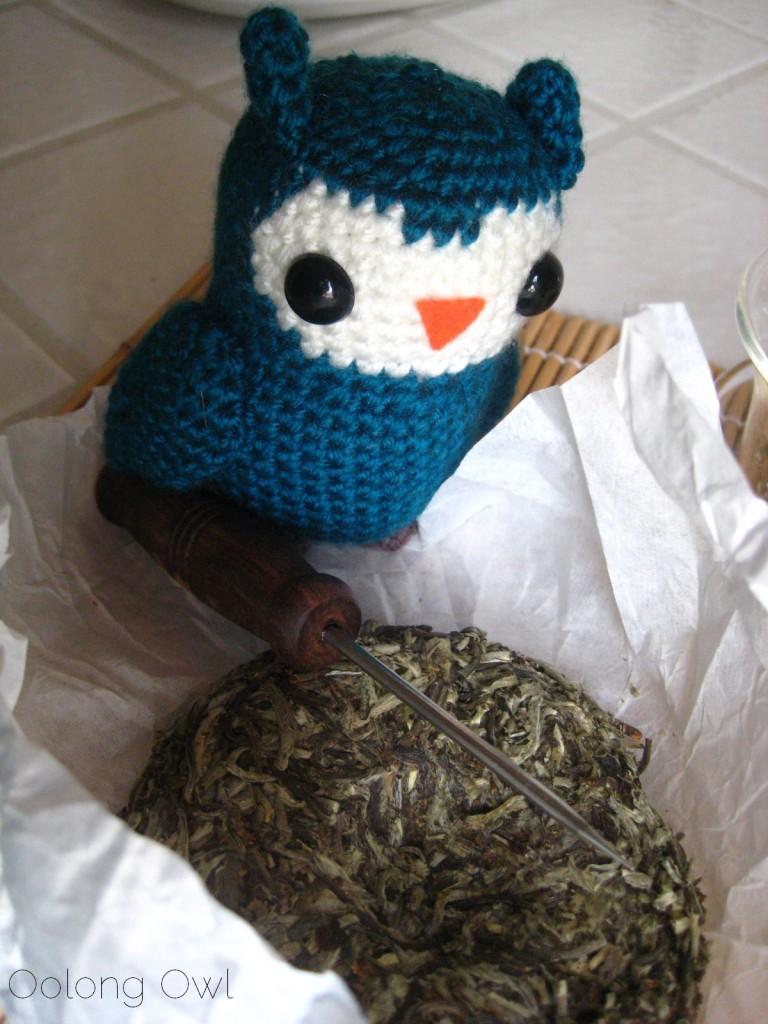 Mandala Tea Silver Buds Raw Puer 2012 - Oolong Owl Tea Review (6)