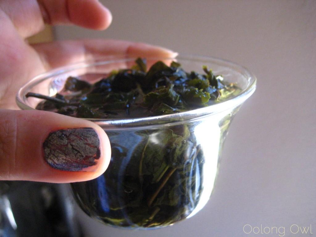 Milk Oolong from Mandala Tea - Oolong Owl Tea Review (15)
