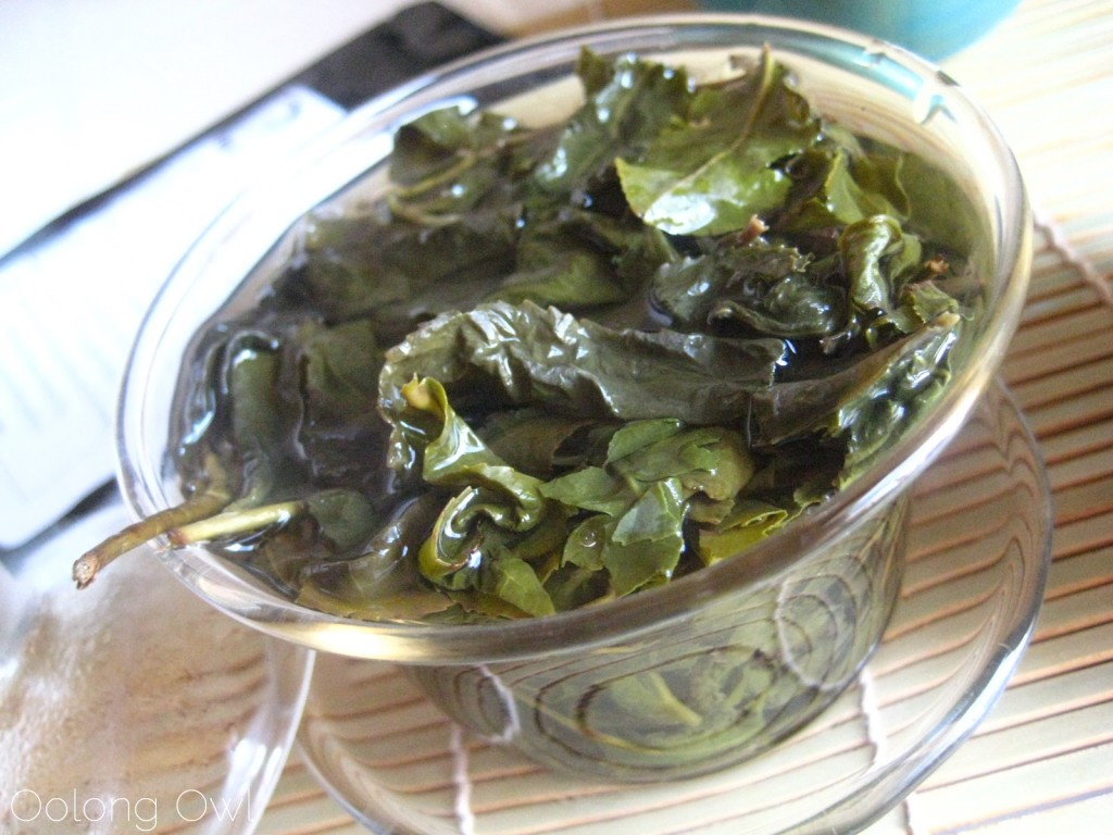 Milk Oolong from Mandala Tea - Oolong Owl Tea Review (18)