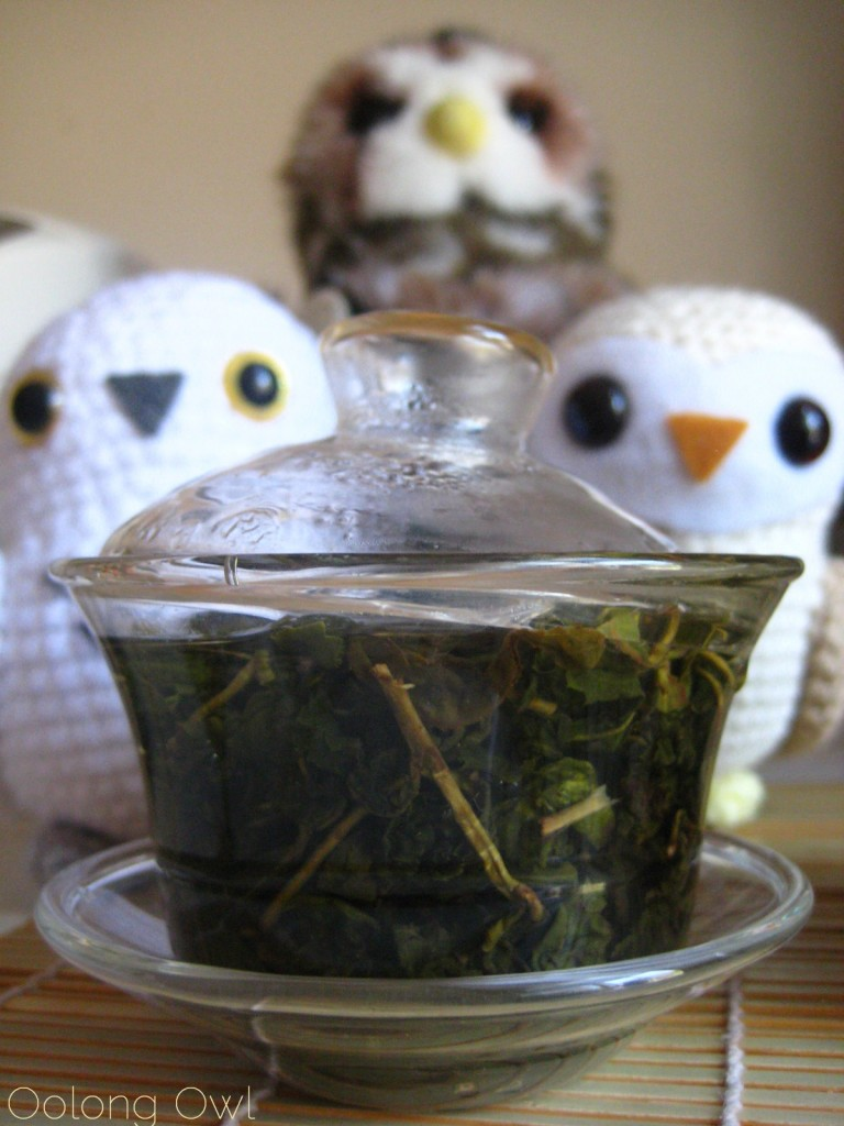 Milk Oolong from Mandala Tea - Oolong Owl Tea Review (9)