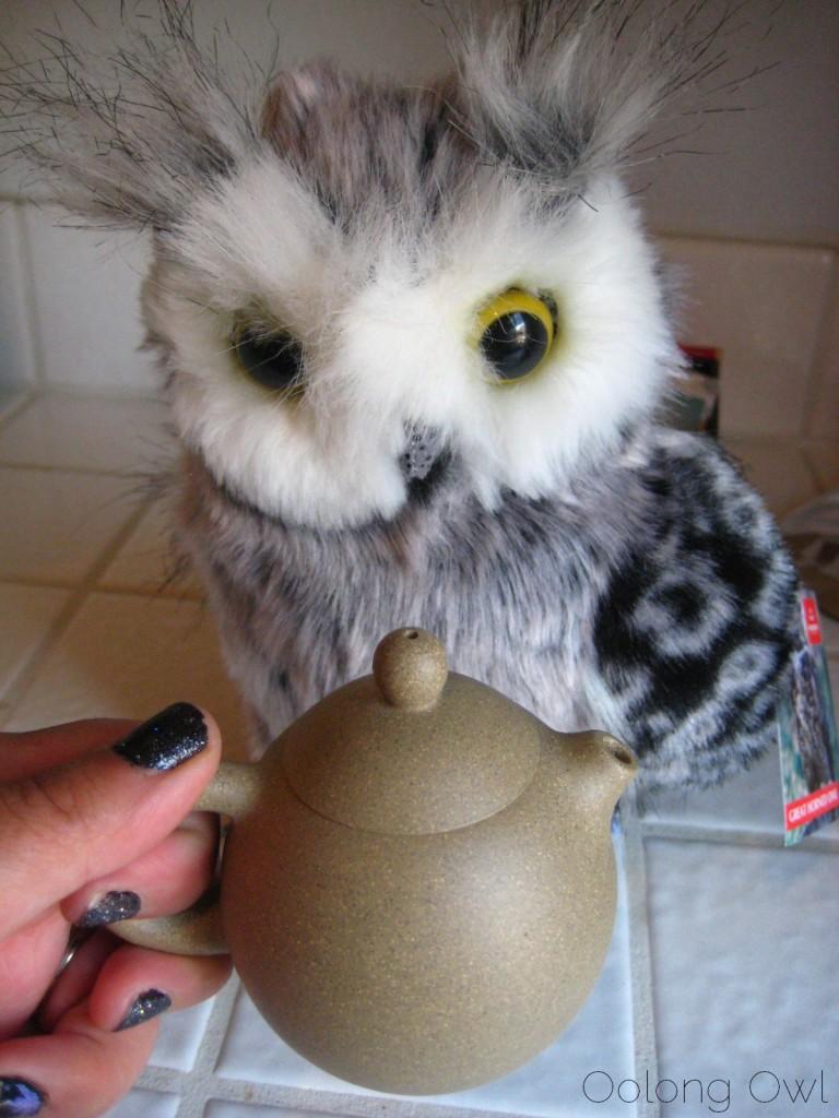 Oolong Owl yixing pot 3  (14)