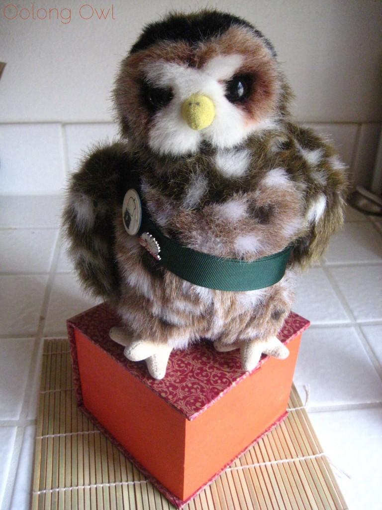Oolong Owls first yixing tea pot (14)