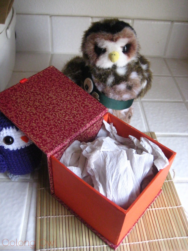 Oolong Owls first yixing tea pot (4)