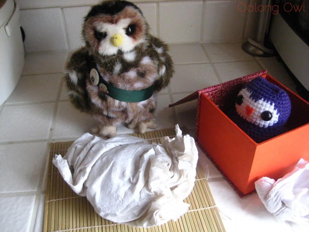 Oolong Owls first yixing tea pot (5)