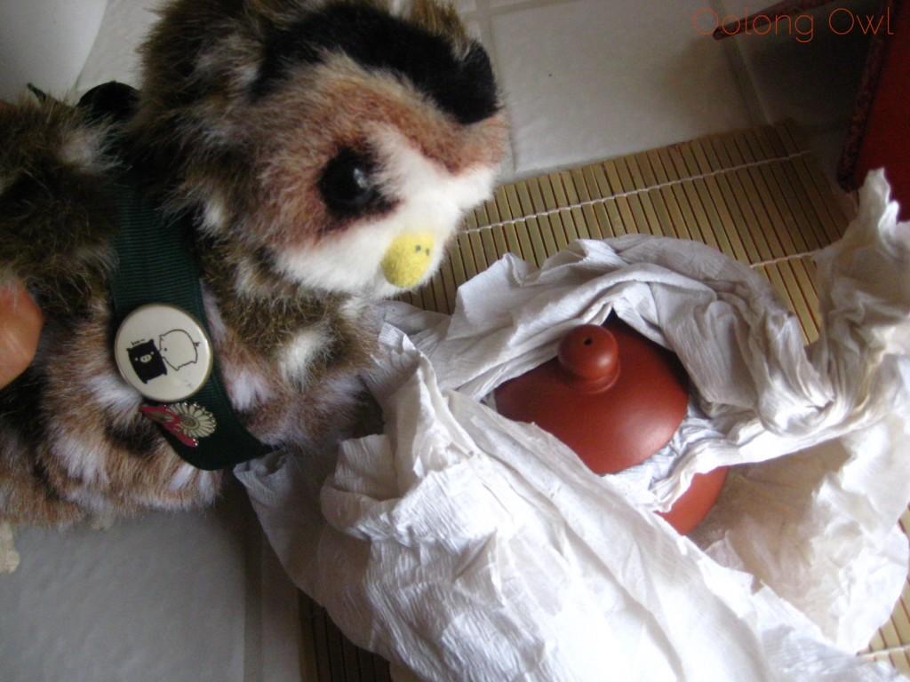 Oolong Owls first yixing tea pot (6)