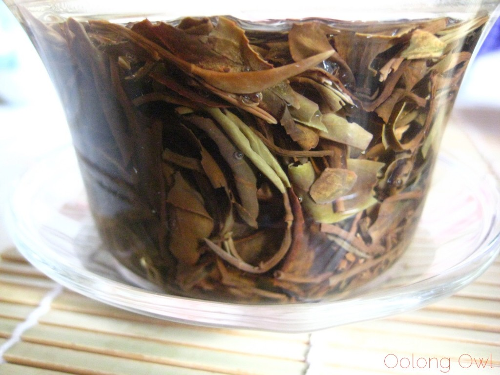 Taiwan Oriental Beauty Bai Hao from Teavivre - Oolong Owl Tea Review (16)