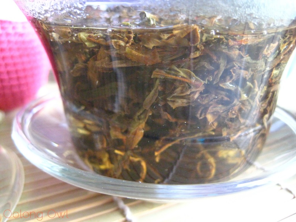 Taiwan Oriental Beauty Bai Hao from Teavivre - Oolong Owl Tea Review (7)
